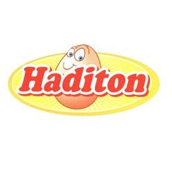Haditon Group